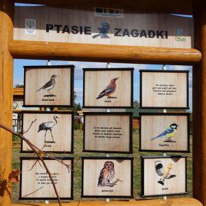 Drewniana tablica edukacyjna z kolorowymi rysunkami zwierząt